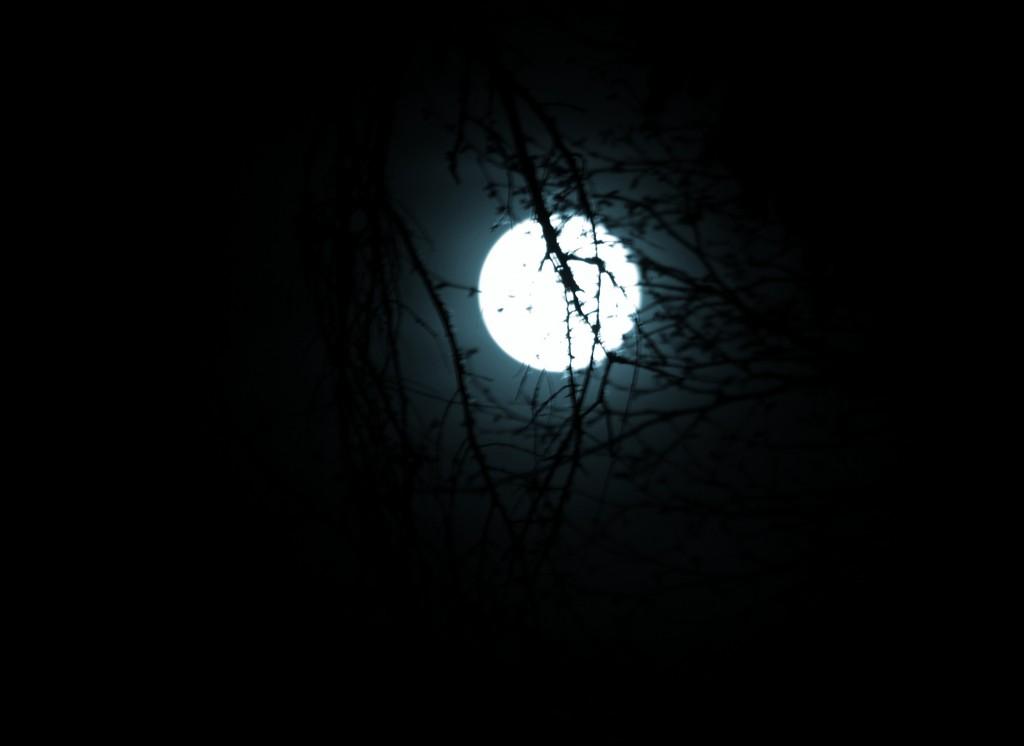 Moon-12