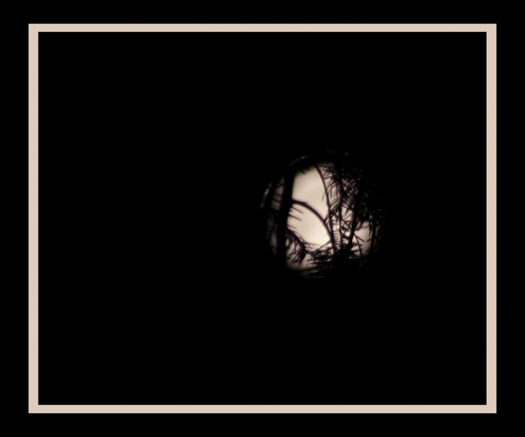 Moon-019
