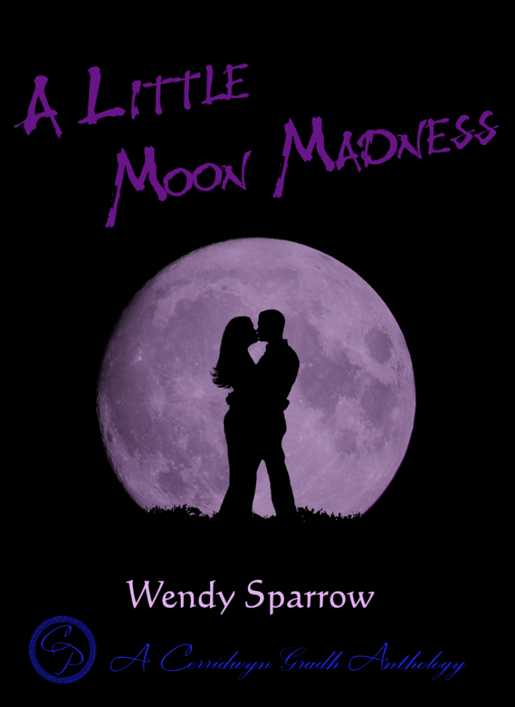 Final Cover Image Moon Madnesss